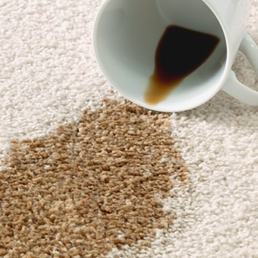 Carpet maintenance | HoC Flooring & Design