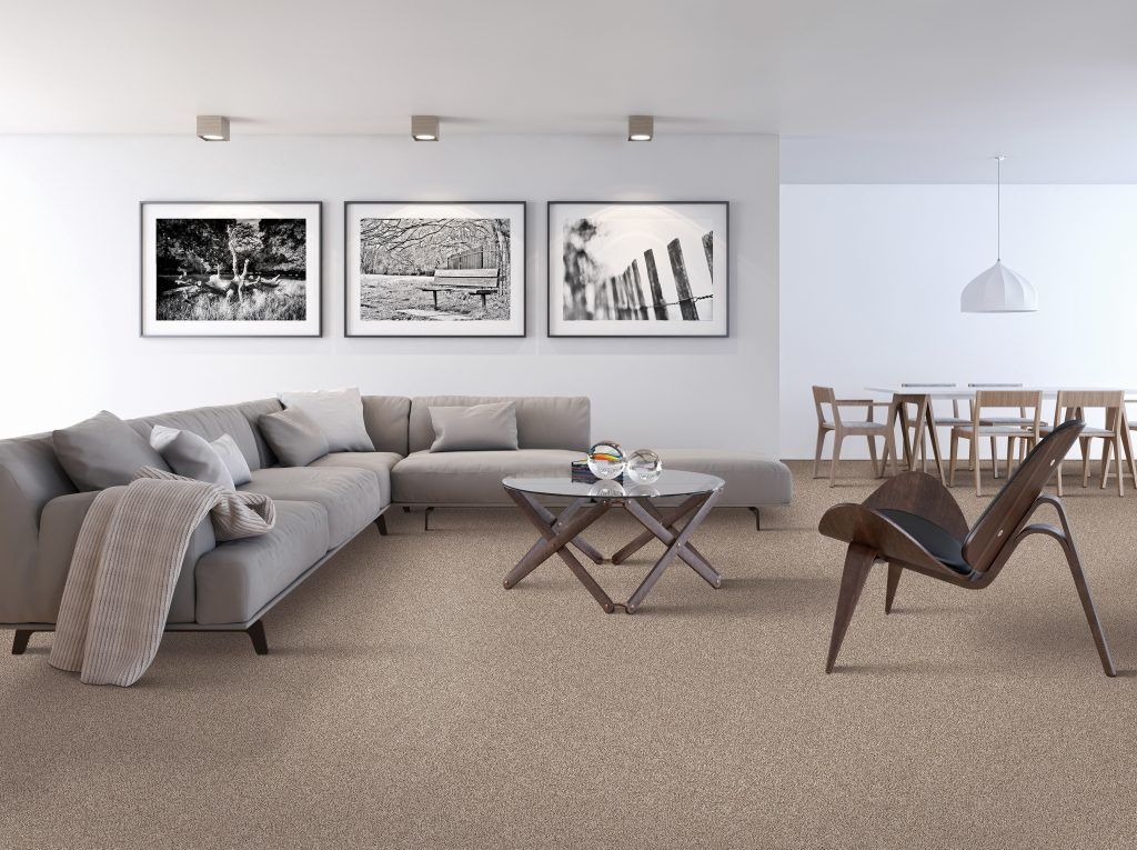 Smart Strand Silk Carpet flooring | HoC Flooring & Design